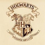 效果 霍格沃茨的信