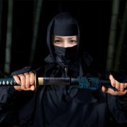 エフェクト Ninja