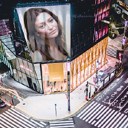 प्रभाव Tokyo Crossing