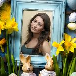 Efekt Tavşanlar