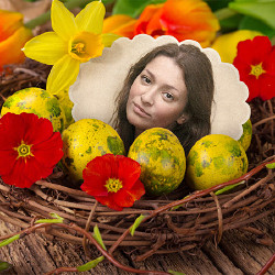 Effect Easter Nest