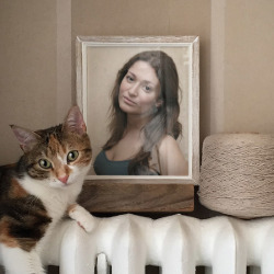 Efekt Kitty and Frame