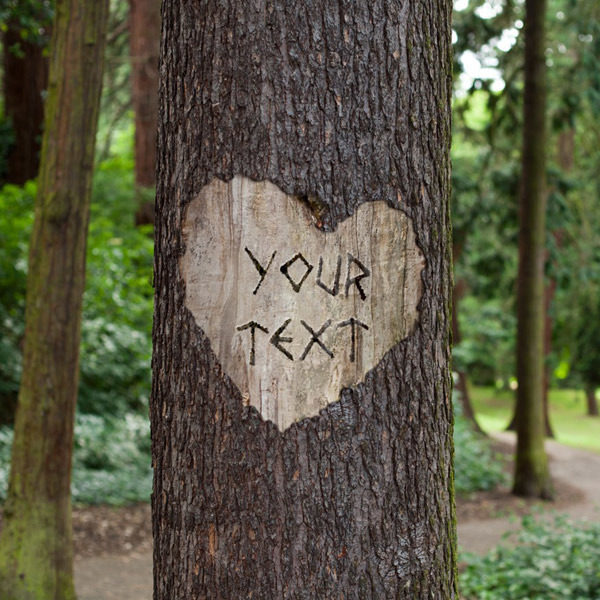 Tree Carving - PhotoFunia: Free photo effects and online