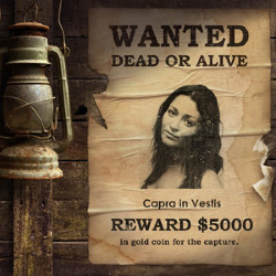 Effet Wanted Poster