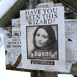 Effekt Wanted Wizard